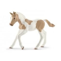 Poulain Paint Horse - Schleich