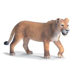 Lionne-courant