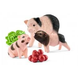 Cochon nain femelle et cochonnets